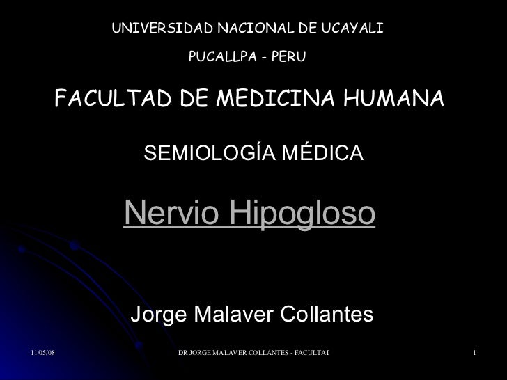 Nervio Hipogloso Jorge Malaver Collantes  UNIVERSIDAD NACIONAL DE UCAYALI PUCALLPA - PERU FACULTAD DE MEDICINA HUMANA SEMI...