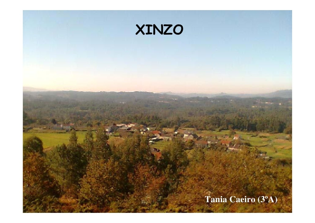 Xinzo