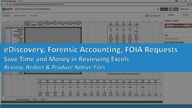 ediscovery forensic accounting foia requests save time