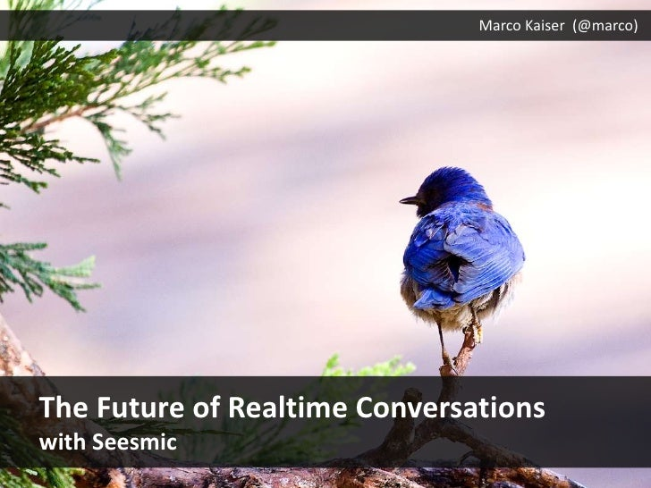 Marco Kaiser (@marco)<br />The Future ofRealtimeConversations<br />withSeesmic<br />