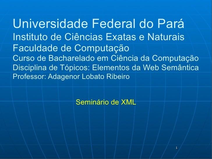 Universidade Federal do Pará Instituto de Ciências Exatas e Naturais Faculdade de Computação Curso de Bacharelado em Ciênc...