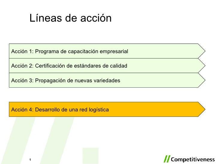 Xochitl Linea De Accion 4