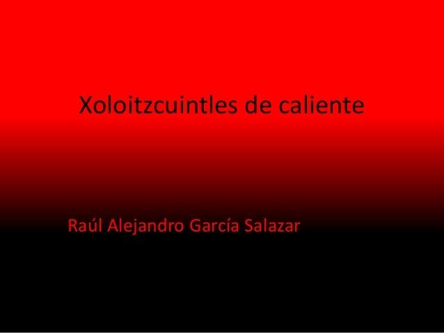 Xoloitzcuintles de caliente Raúl Alejandro García Salazar