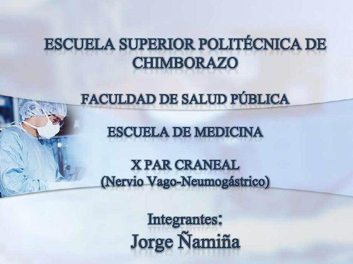 ESCUELA SUPERIOR POLITÉCNICA DE CHIMBORAZOFACULDAD DE SALUD PÚBLICAESCUELA DE MEDICINAX PAR CRANEAL (Nervio Vago-Neumogást...