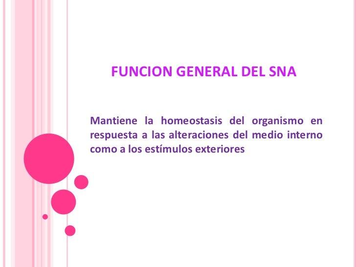 FUNCION GENERAL DEL SNA<br />Mantiene la homeostasis del organismo en respuesta a las alteraciones del medio interno como ...