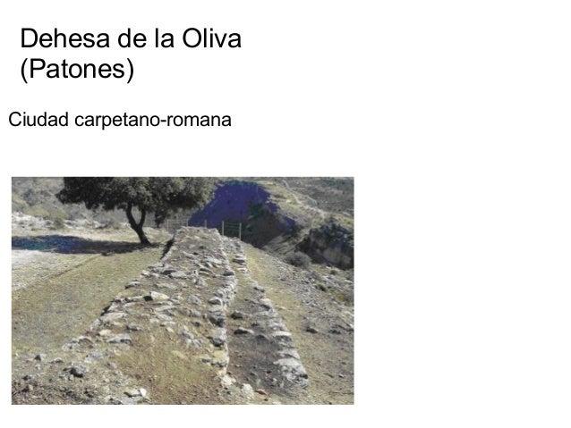 Dehesa de la Oliva (Patones) Ciudad carpetano-romana