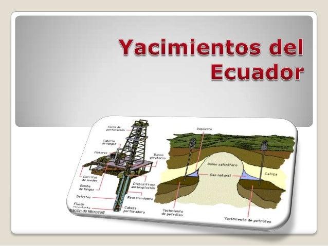   La empresa estatal Petroecuador descubrió yacimientos de petróleo en la Amazonía por un volumen de 18 millones de barri...