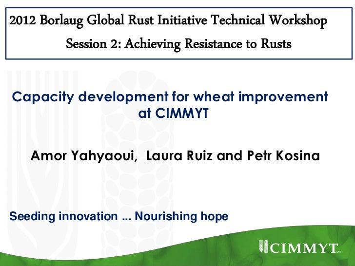 2012 Borlaug Global Rust Initiative Technical Workshop         Session 2: Achieving Resistance to RustsCapacity developmen...