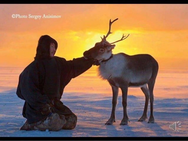 Yamal (Russia) Photographer Sergey Anisimov