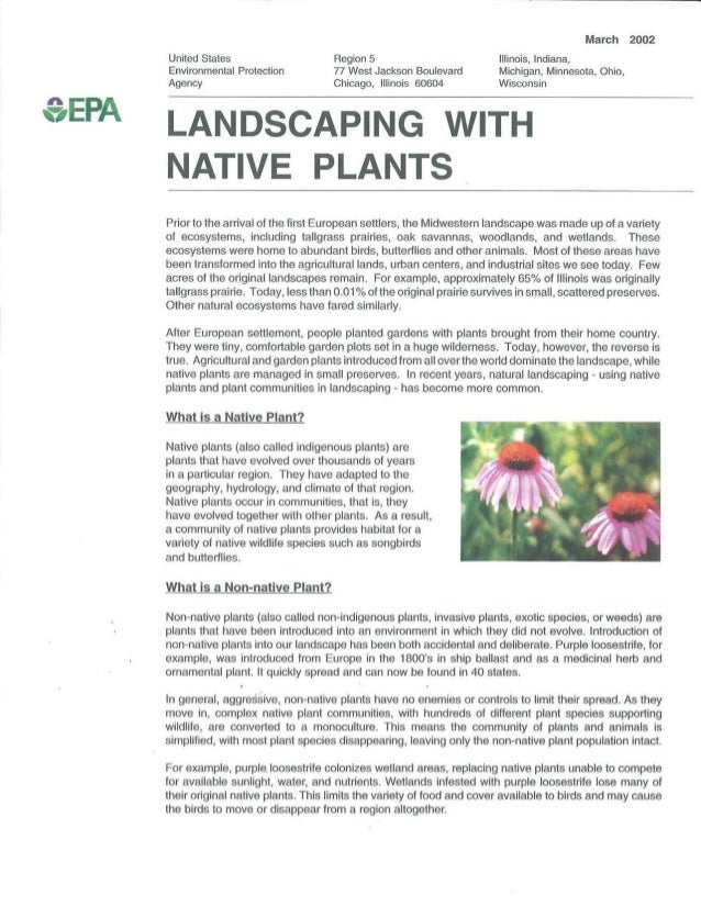Landscaping with Native Plants - Great Lakes EPA