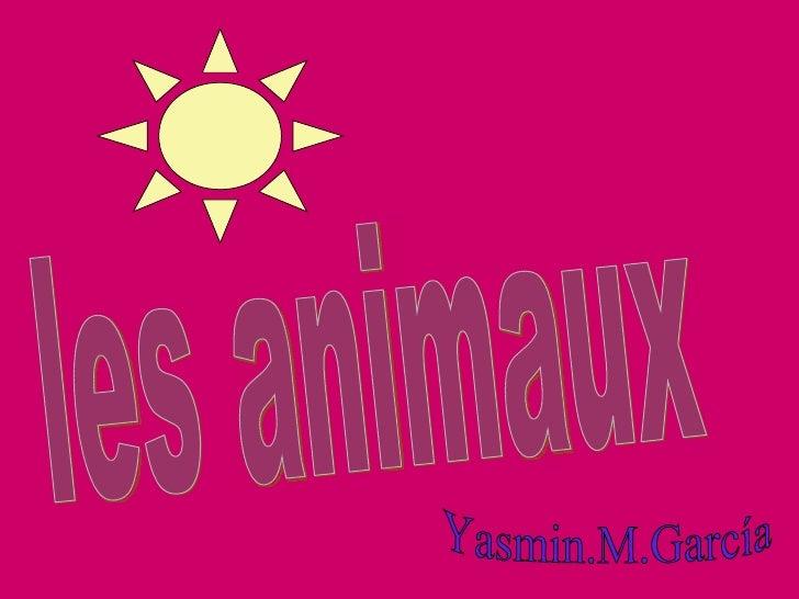 les animaux Yasmin.M.García