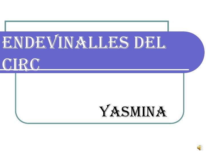 Endevinalles delcirc         yasmina