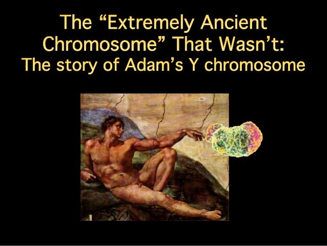 The Oldest Y Chromosome that Wasn't