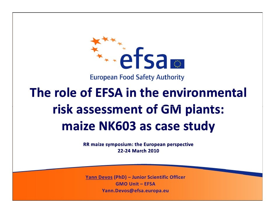 The role of EFSA in the environmental    risk assessment of GM plants:      maize NK603 as case study          RR maize sy...