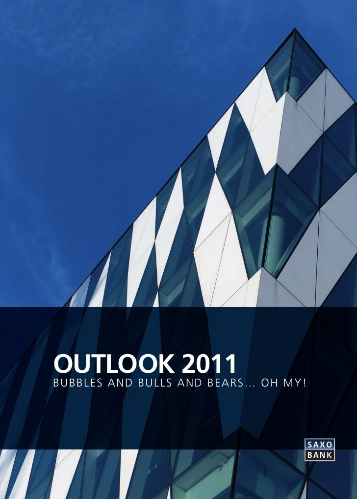 OUTLOOK 2011BUBBLES AND BULLS AND BEARS… OH MY!