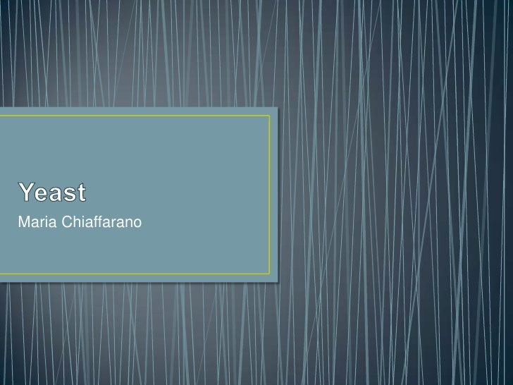 Yeast<br />Maria Chiaffarano<br />