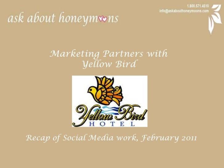 Marketing Partners with <br />Yellow Bird<br />Recap of Social Media work, February 2011<br />