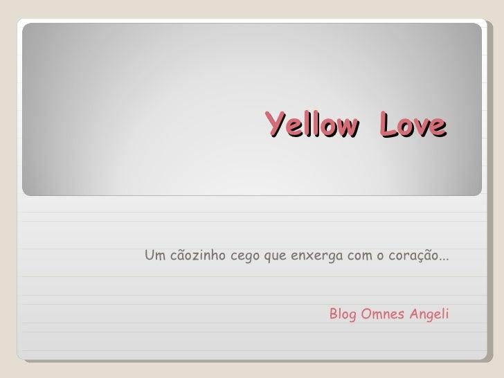 Yellow   Love Um cãozinho cego que enxerga com o coração... Blog Omnes Angeli