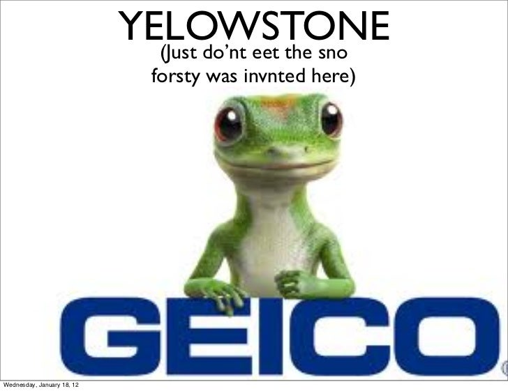 YELOWSTONE                              (Just do'nt eet the sno                               forsty was invnted here)Wedn...