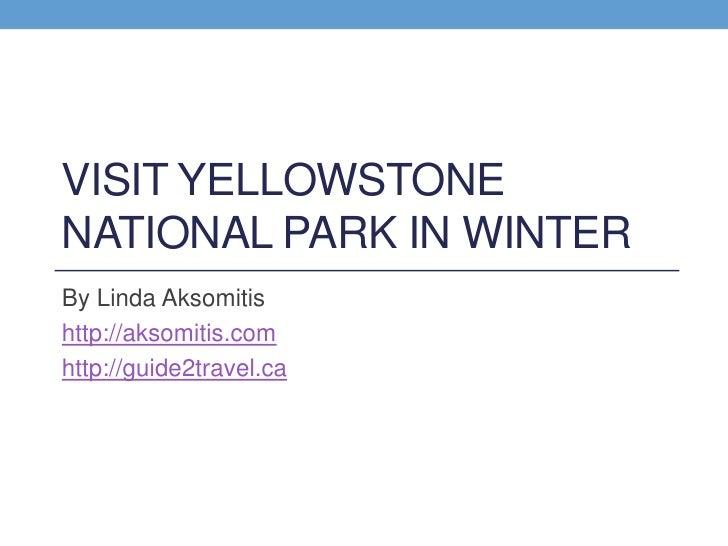 Yellowstone National Park Winter Photo Tour