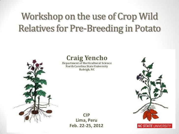 Workshop on the use of Crop WildRelatives for Pre-Breeding in Potato              Craig Yencho           Department of Hor...