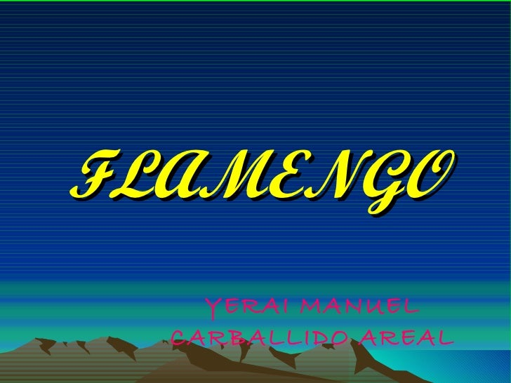 FLAMENGO YERAI MANUEL CARBALLIDO AREAL