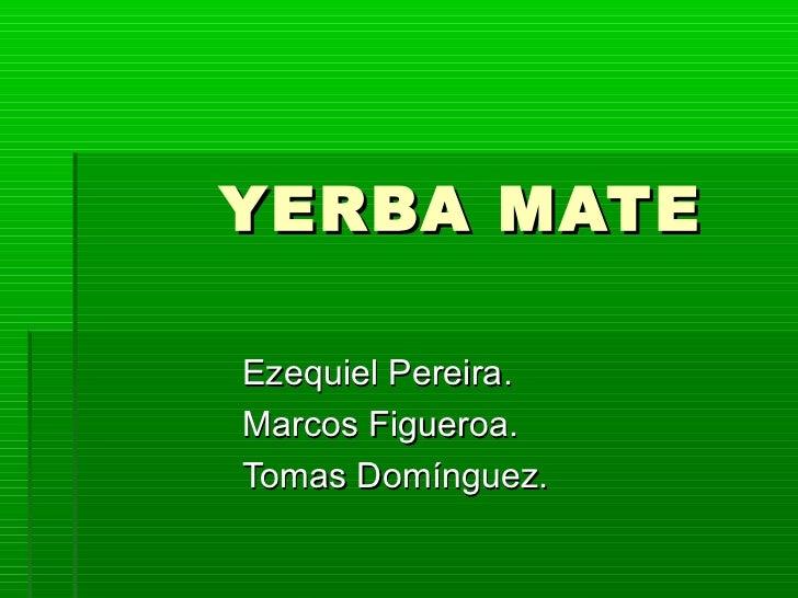 Circuito Productivo De La Yerba Mate : Yerba mate de eze marcos tomas