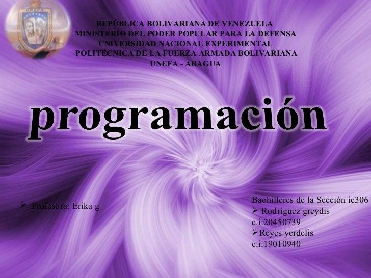 Yerdelis programacion
