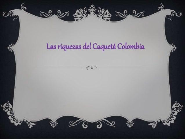 Las riquezas del Caquetá Colombia