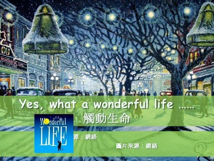 Yes, what a wonderful life ……          觸動生命       來源:網絡               圖片來源:網絡