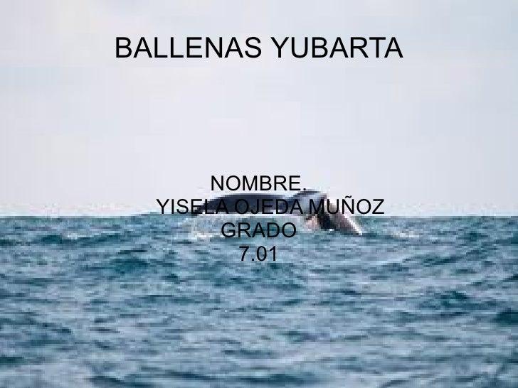BALLENAS YUBARTA NOMBRE. YISELA OJEDA MUÑOZ GRADO 7.01
