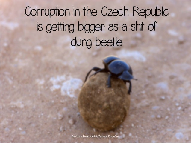 Corruption in the Czech Republic  is getting bigger as a shit of           dung beetle          Barbora Davidová & Ž...