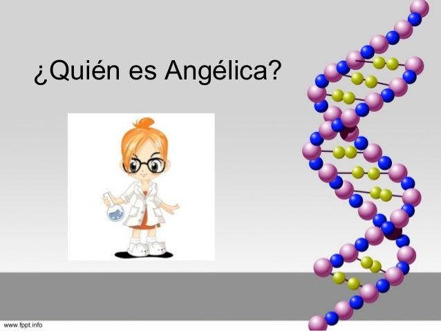 ¿Quién es Angélica?