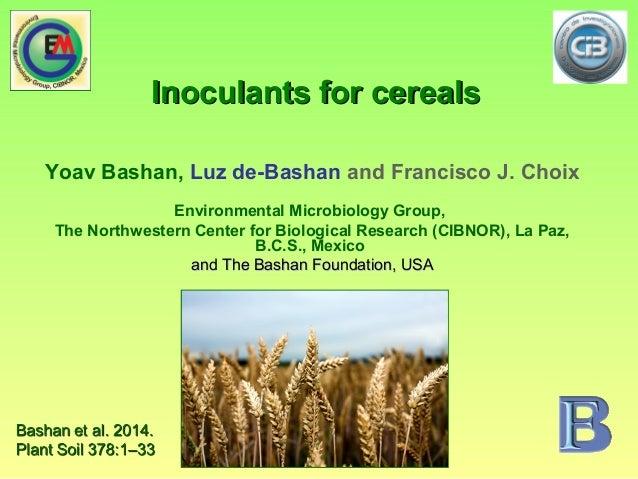 Inoculants for cerealsInoculants for cereals Yoav Bashan, Luz de-Bashan and Francisco J. Choix Environmental Microbiology ...