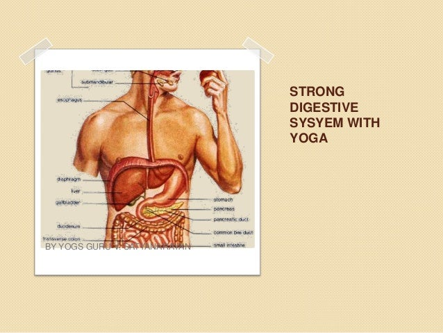 Yogic tips for strong digestive system