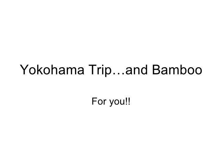 Yokohama Trip…and Bamboo For you!!