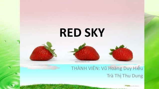 Young Marketers 2  - Red Sky