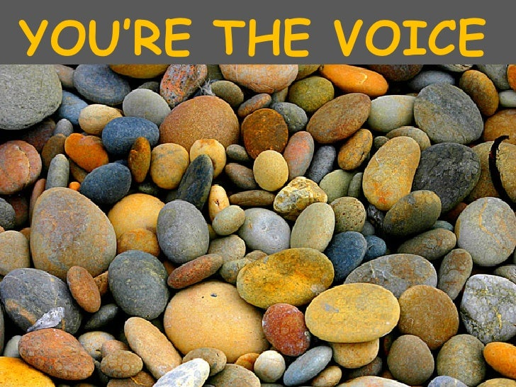 'You're The Voice'