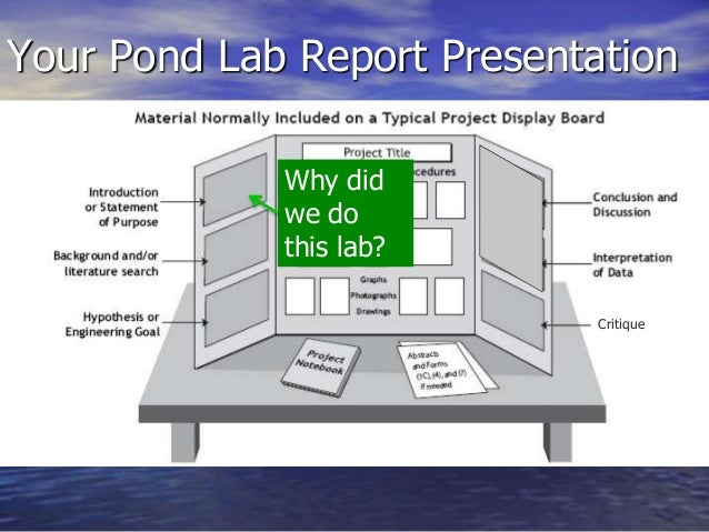 We do your lab report