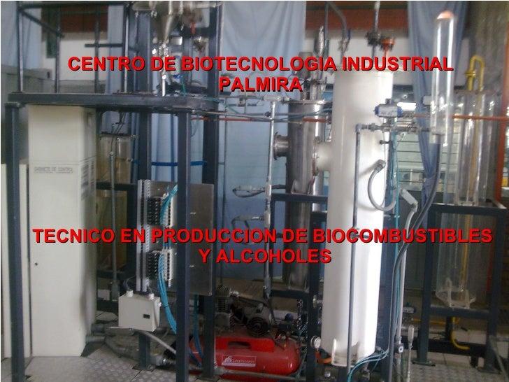 CENTRO DE BIOTECNOLOGIA INDUSTRIAL PALMIRA TECNICO EN PRODUCCION DE BIOCOMBUSTIBLES  Y ALCOHOLES
