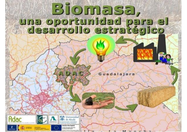 Proyecto para la investigación, industrialización y comercialización de productos agrarios de base energética para la mejo...