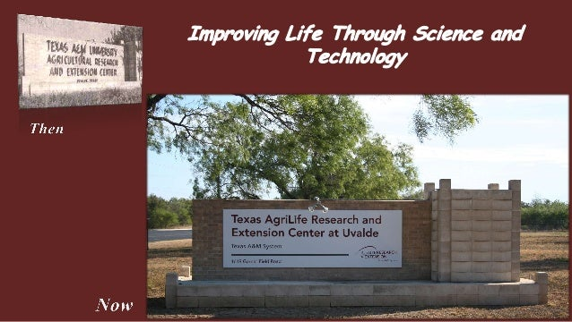 """The Uvalde Research Center's mission is to create knowledge andtechnology that result in efficient and profitable intensi..."