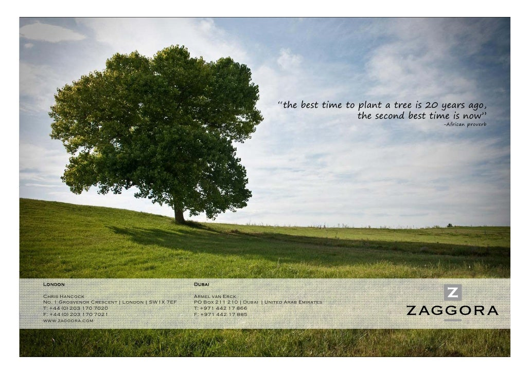 """""""the best time to plant a tree is 20 years ago,                                                                           ..."""