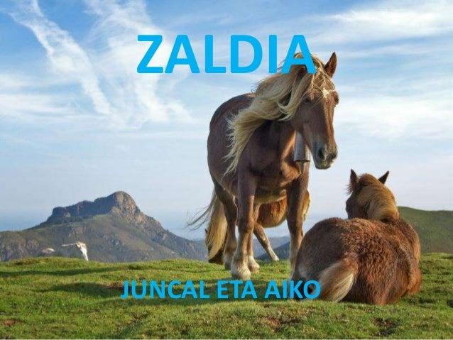 ZALDIA JUNCAL ETA AIKO
