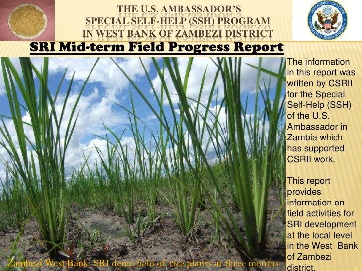 Zambia   Mid-Term SRI Field Report to US Embassy 2012