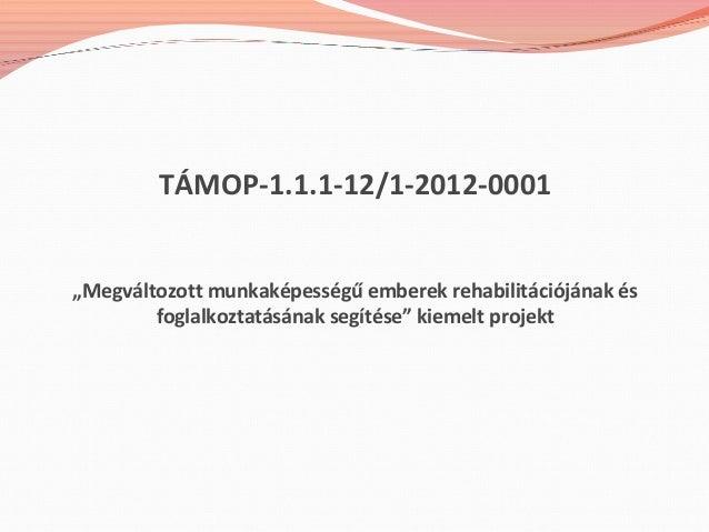 """TÁMOP-1.1.1-12/1-2012-0001 """"Megváltozott munkaképességű emberek rehabilitációjának és foglalkoztatásának segítése"""" kiemelt..."""