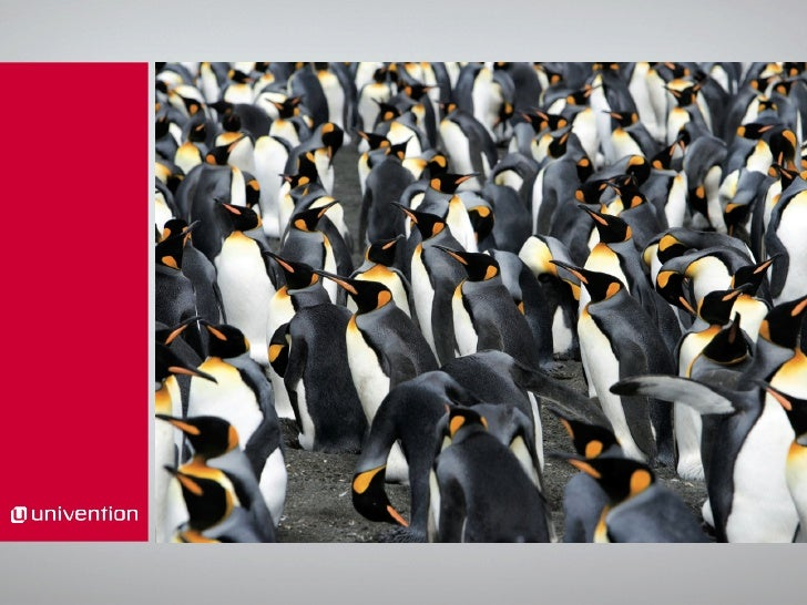 Zararfa SummerCamp 2012  - One solution of two vendors solves plenty needs