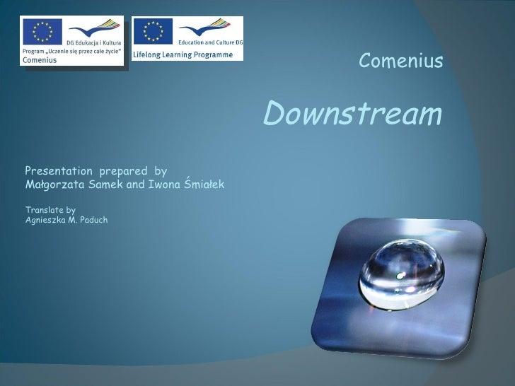 Comenius Downstream Presentation  prepared   by Małgorzata Samek  and  Iwona Śmiałek Translate  by  Agnieszka M. Paduch