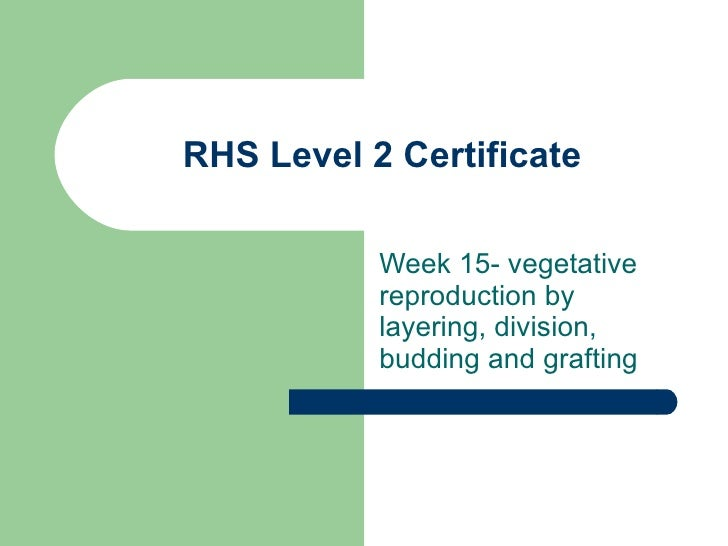 RHS Level 2 Certificate Week 15- vegetative reproduction by layering, division, budding and grafting