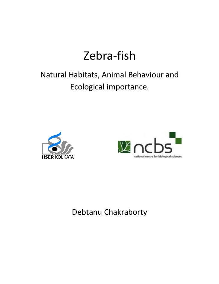 Zebra-fishNatural Habitats, Animal Behaviour and        Ecological importance.        Debtanu Chakraborty